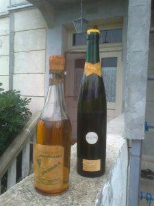 vino plemenka stara