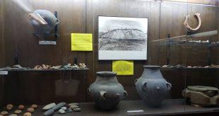 zavicajni muzej vlasotince
