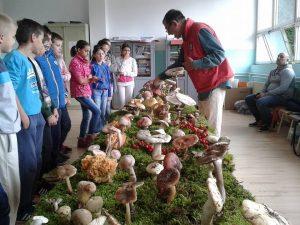 gljive-deca