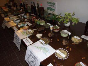 ivan-milosevic-biljna-apoteka