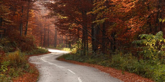 Goč u jesenjim bojama