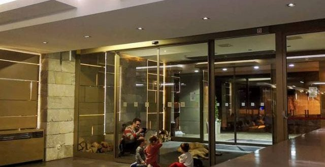 Hotel na Staroj Planini otvorio vrata za pse lutalice