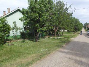 selo Petrovac poznato po sirokim ulicama
