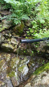 muska voda izvoriste