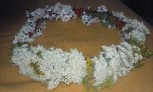ivanjsko cvece