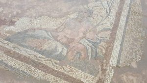 mozaik flavius