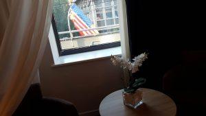 pogled americka yastava