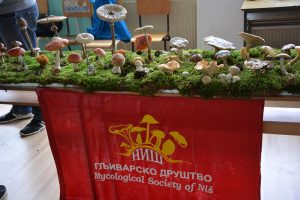 gljive-gljivarsko-drustvo-nis