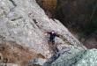 TREĆA SREĆA – sade žalfiju na planini Kukavici