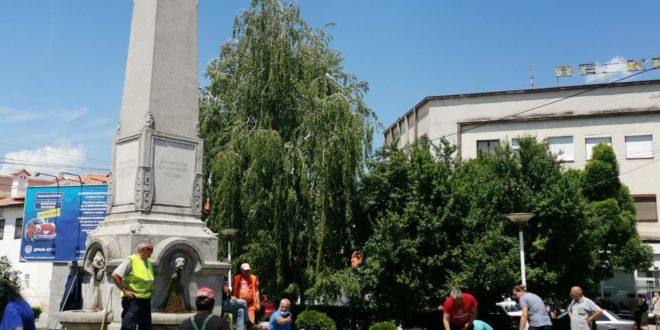 Prolećna sadnja u Vlasotincu