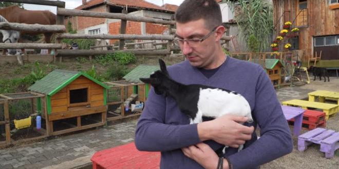 Zoo kutak – Druženje sa životinjama za mališane kojima je to najpotrebnije